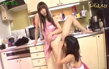 Asian lesbians with hairy pussies in action